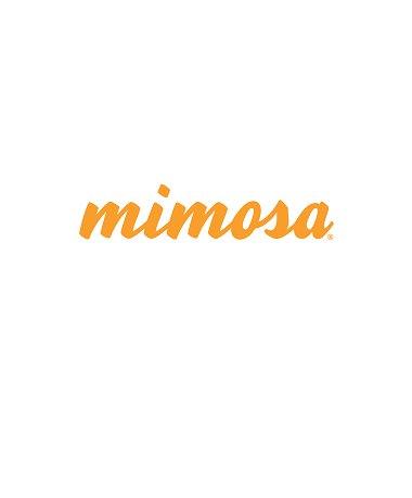 Consertos equipamentos MIMOSa
